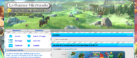 Le Gamer Nintendo