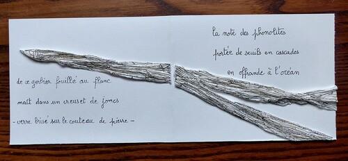 'Ecrire la Loire'. Saint-Etienne. Mars 2019
