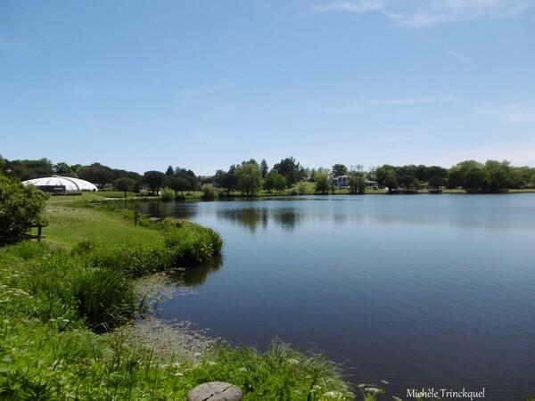 Une balade au Lac de Christus à SAINT PAUL LES DAX (40), le 6 mai (suite)
