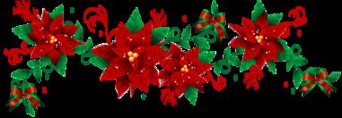 ✰ Joyeux Noël à tous ✰