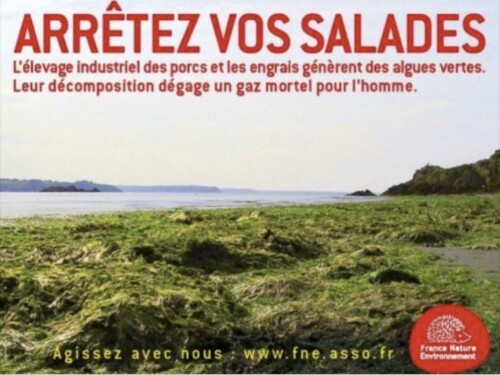 affiche agriculture salade