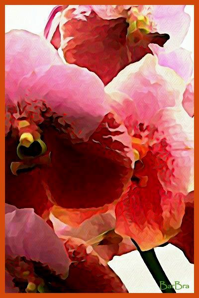P0009071 Watercolor 1