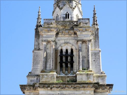Cathédrale Notre Dame de l'Assomption-Luçon-Vendée