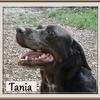 Tania B 4