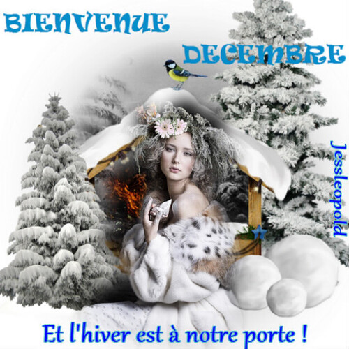 DECEMBRE BEAUT'YS IMAGES AVEC CHANTAL