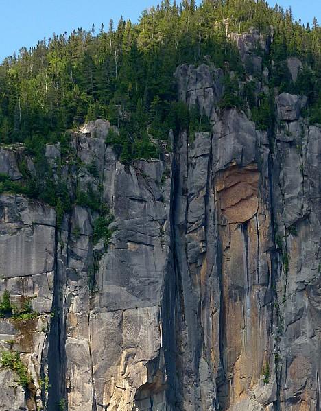 Croisière fjord Saguenay tête de tigre