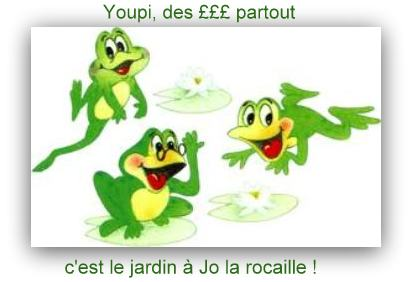 grenouilles humour