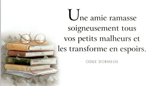Citations sur l'amitié : (25)