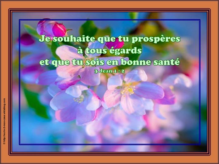 Je souhaite que tu prospères - 3 Jean 1 : 2