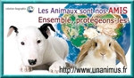 PROTEGEONS LES ANIMAUX