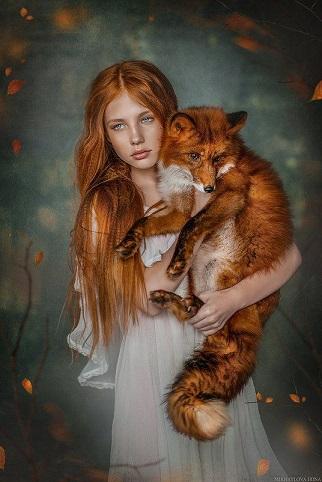Le renard ...