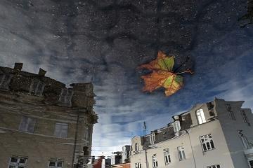 Les poésies de la pluie ...