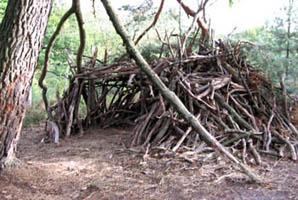 Cabanes des bois - Esprit Cabane
