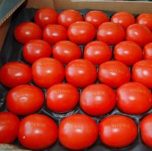 Tomates laserfood
