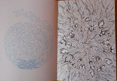 DOMANDALAS mes derniers carnets de coloriages coloring book