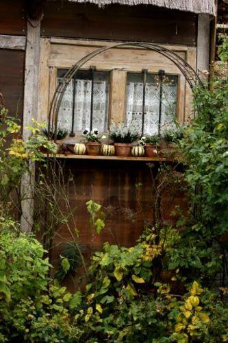Jardinières d'automne