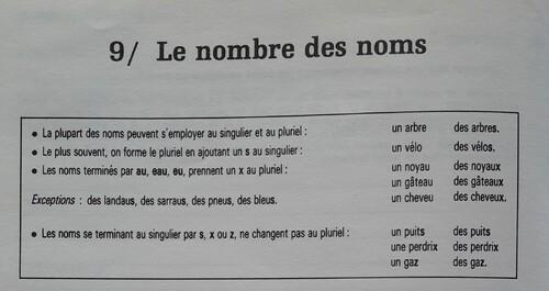 E / Le pluriel (nombre grammatical)