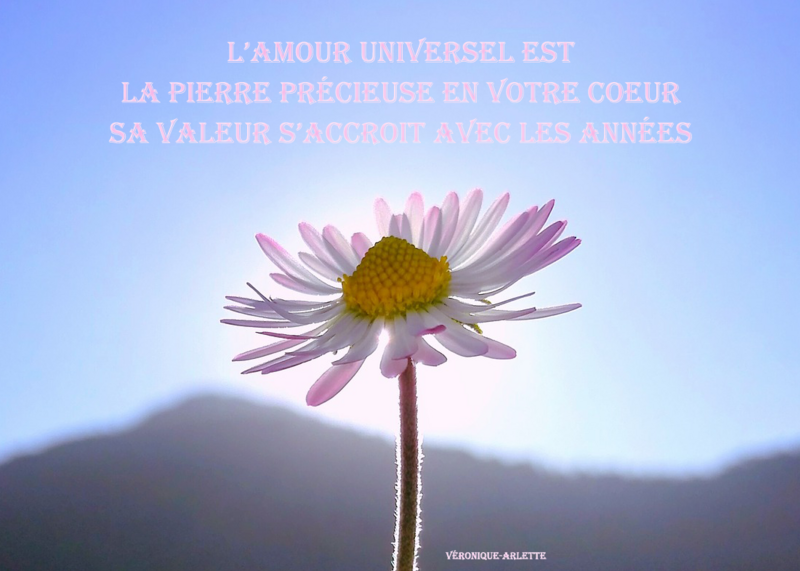 Perle d'Amour Universel 13#2018