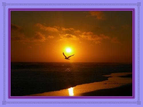 L'Esprit de Dieu en mouvement dans votre vie