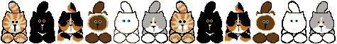 chats en ligne
