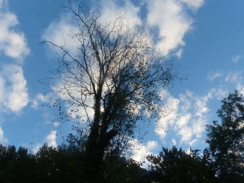 Le ciel hier soir et ce matin