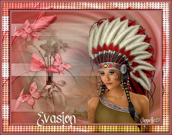 """""""Evasion"""""""