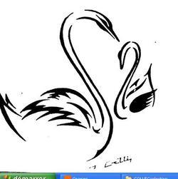Collection GATTI : Les cygnes