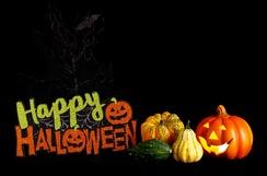"""Résultat de recherche d'images pour """"happy halloween"""""""