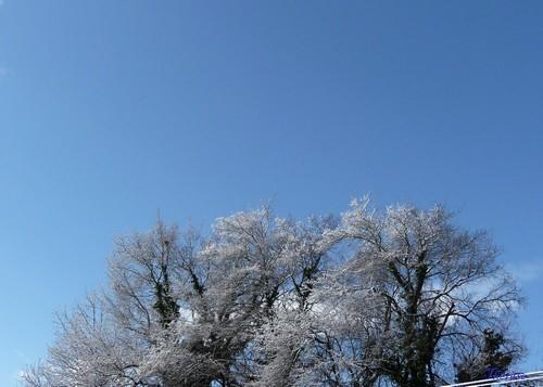 Première neige 26-27 novembre 2011