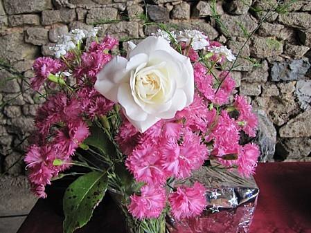 fleurs de chez ma grand mére (2)