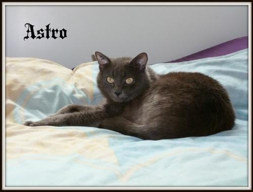 Astro a besoin de vous - entrée le 26 février 2014