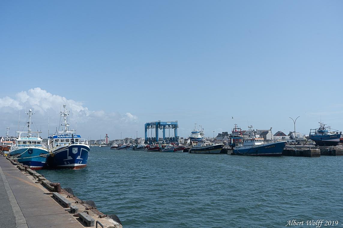 Finistère 2019 : Le Guilvinec - Port de  pêche - 1