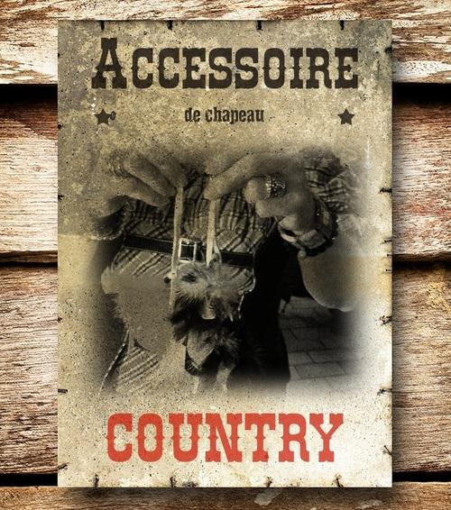 accessoire de chapeau country