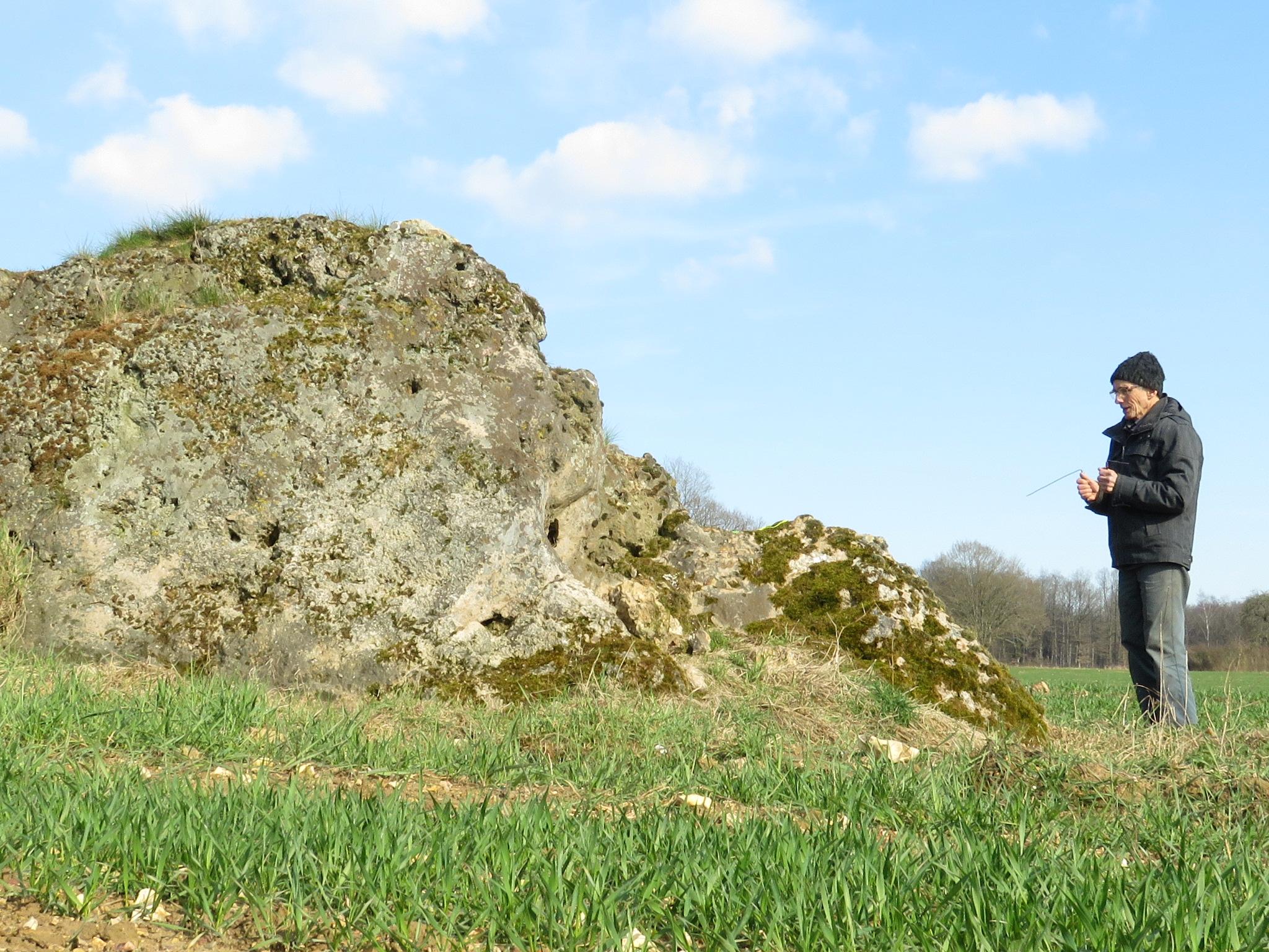 mégalithe de l'Yonne
