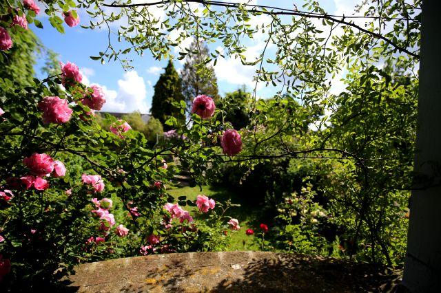 Fête des roses à Gerberoy