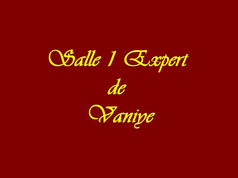 Salle 1 Experts de Vaniye
