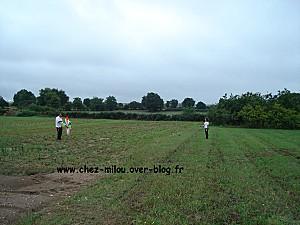 cerf volant 2011 06