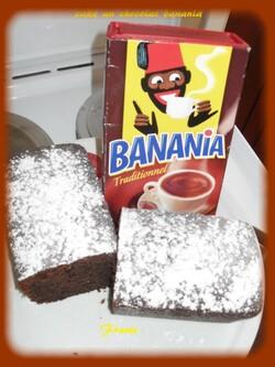 cake au chocolat banania