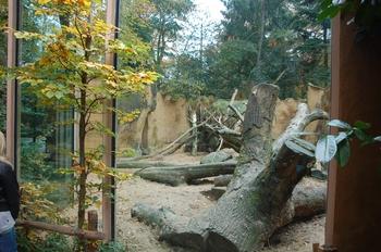 dierenpark amersfoort d50 2011 006