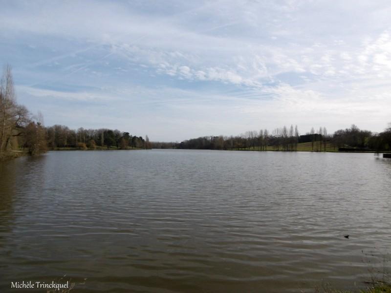 Une balade au Lac du HOUGA (32), le 7 février (suite)...