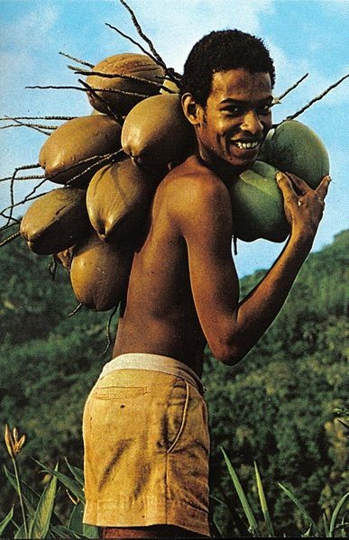 387px-Boy_with_coconuts_Seychelles.jpg
