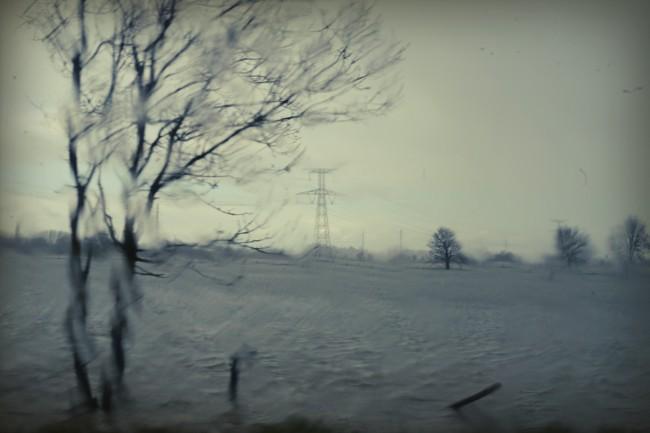 paysages 5381