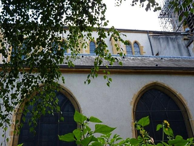 Jardin de curé église Saint-Martin Metz 2011 - 9