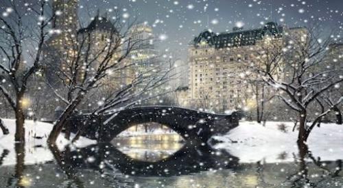 """"""""""" PHOTO  """"Animée du Pont de Gapstow à NEW YORK."""""""""""