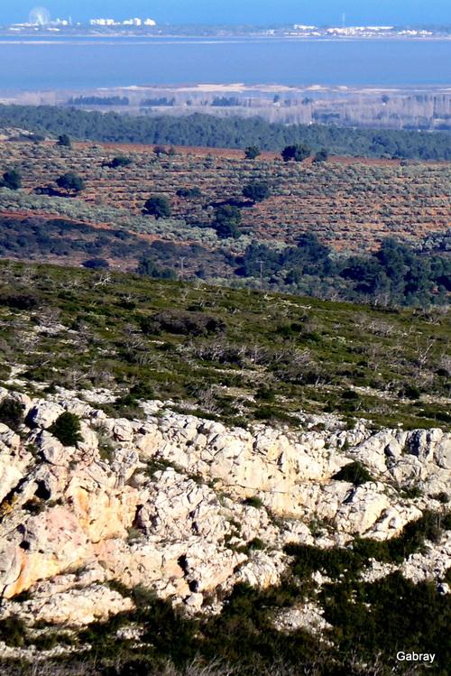 Paysages vus des hauteurs de Vingrau