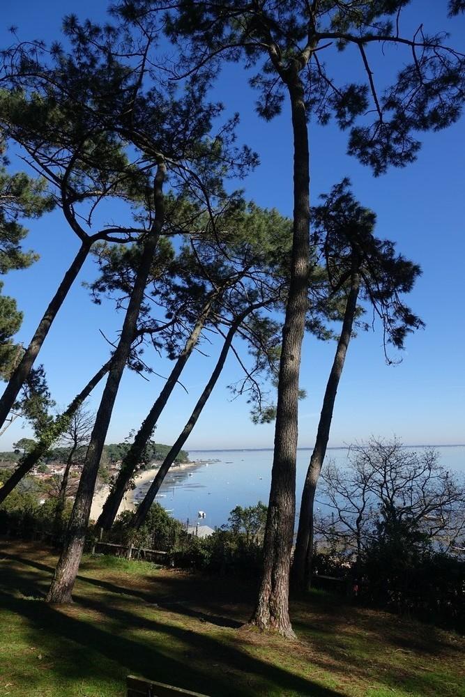 Balade sur la presqu'île du Cap-Ferret : la Pointe aux chevaux...