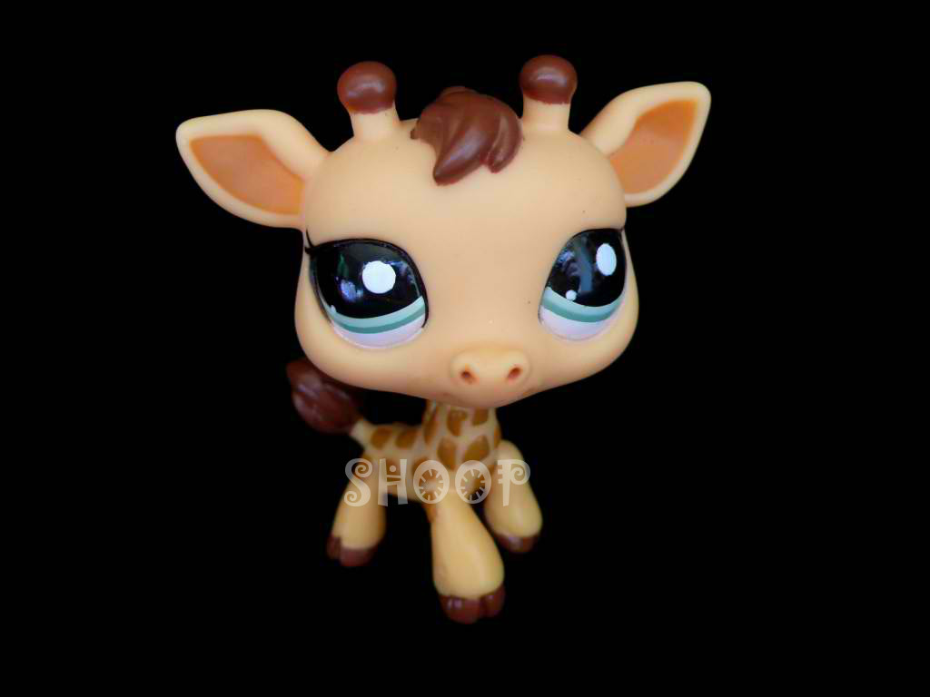LPS 2049