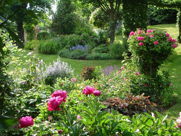 Rosier jardin d 39 eliane jardin des lianes pinterest php for Jardins anglais celebres