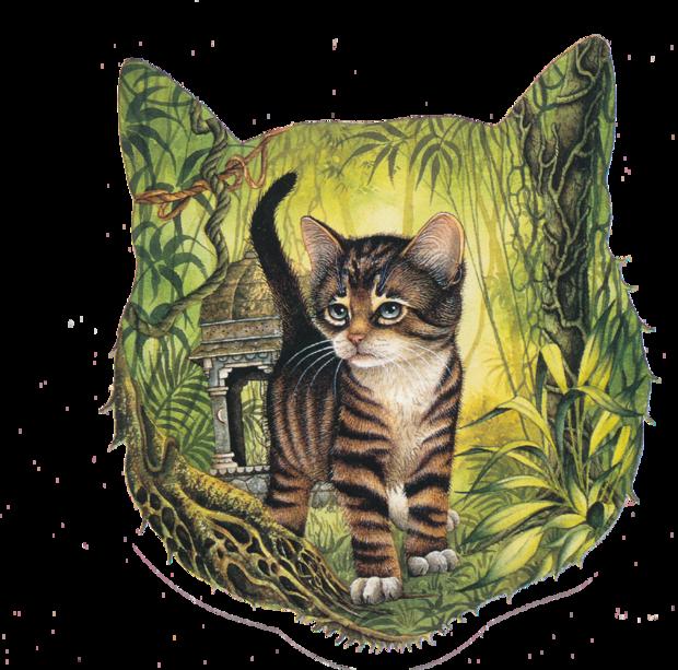 Les chats de VERCRUYCE