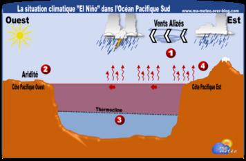 Peu de Baleines en 2015... la faute d'El Nino ?
